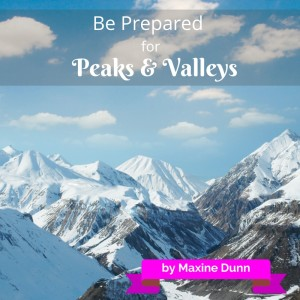 Be Prepared for Peaks and Valleys image 11-19-15